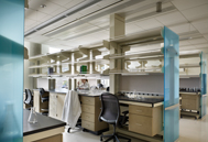 Hospitals & Labs